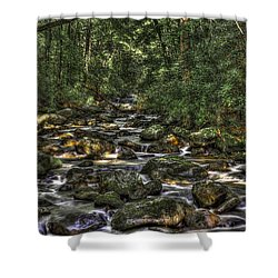 A River Through The Woods Shower Curtain