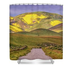 Shower Curtain featuring the photograph A Road Less Traveled by Marc Crumpler
