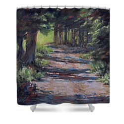 A Road Less Travelled Shower Curtain by Mia DeLode