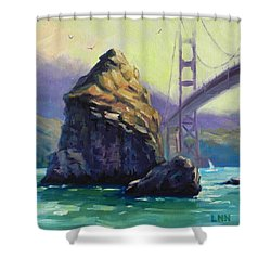 A Rock Shower Curtain