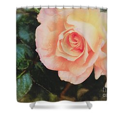 A Rose For Kathleen Shower Curtain