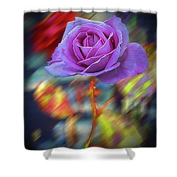 Shower Curtain featuring the photograph A Rose by Vladimir Kholostykh