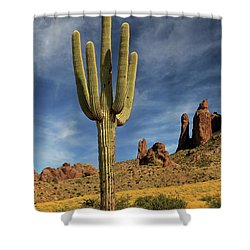 A Saguaro In Spring Shower Curtain by James Eddy