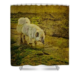 A Salted Thirst Shower Curtain by Loriental Photography