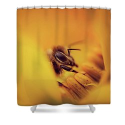 A Sea Of Yellow Shower Curtain