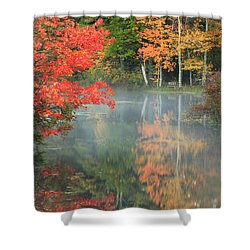 A Seat To Watch Autumn Shower Curtain