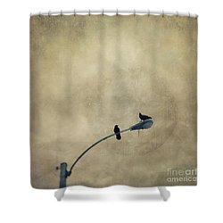 A Short Moment Shower Curtain by Priska Wettstein