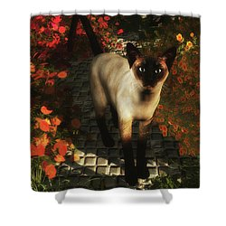 A Siamese Cat Is Looking  Shower Curtain