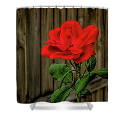 A Simple Beauty Shower Curtain