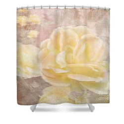 A Softer Rose Shower Curtain by Victoria Harrington