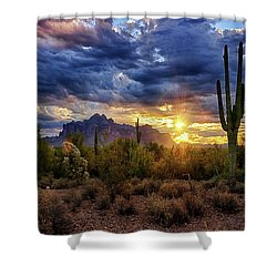 Shower Curtain featuring the photograph A Sonoran Desert Sunrise - Square by Saija Lehtonen