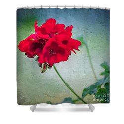 A Splash Of Red Shower Curtain