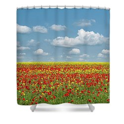 Shower Curtain featuring the photograph A Splatter Of Red by Tim Gainey
