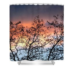 Shower Curtain featuring the photograph A Splendid Silhouette by Will Borden