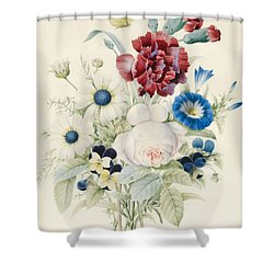A Spray Of Flowers Including Rose Blue Convolvulus And Pansies Shower Curtain