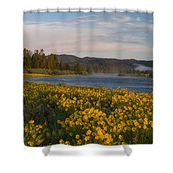 A Spring Morning Shower Curtain by Leland D Howard