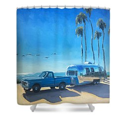 A Squadron Of Pelicans Shower Curtain