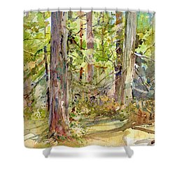 A Stand Of Trees Shower Curtain