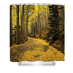 A Stroll Among The Golden Aspens  Shower Curtain