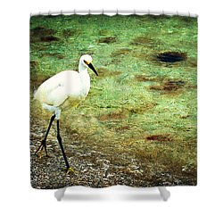 Shower Curtain featuring the photograph A Stroll On The Beach by Marty Koch