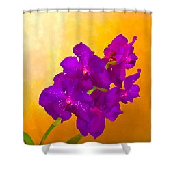 A Study In Orchid Shower Curtain