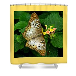 A Subtle Beauty Shower Curtain