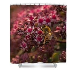 Shower Curtain featuring the photograph A Summer Bee by Yeates Photography