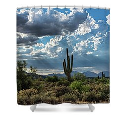 Shower Curtain featuring the photograph A Summer Day In The Sonoran  by Saija Lehtonen
