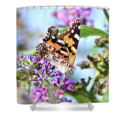 Shower Curtain featuring the photograph A Summer Lady - Painted Lady Butterfly by Kerri Farley
