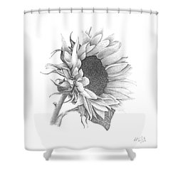 A Sunflowers Beauty Shower Curtain by Patricia Hiltz