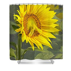 A Sunflower's Prayer Shower Curtain