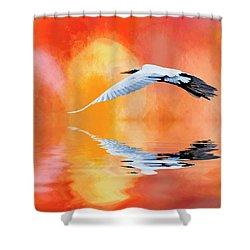 A Sunny Morning Shower Curtain by Cyndy Doty