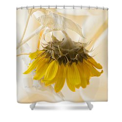 A Suspended Sunflower Shower Curtain