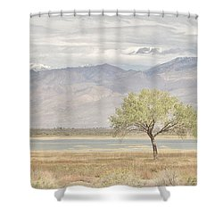 A Sweet Scene Shower Curtain