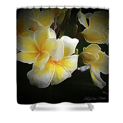 A Symbol Of Grace Shower Curtain