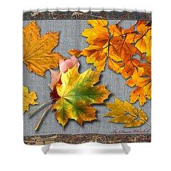 A Taste Of Fall Shower Curtain by Doreen Whitelock