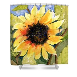 A Taste Of Sunshine Shower Curtain