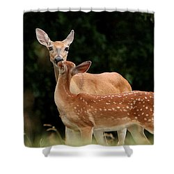 A Tender Moment Shower Curtain by Sheila Brown