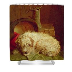 A Terrier Shower Curtain by John Fitz Marshall