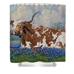 A Texas Welcome Shower Curtain