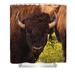 A Thoughful Moment Shower Curtain by Tamyra Ayles