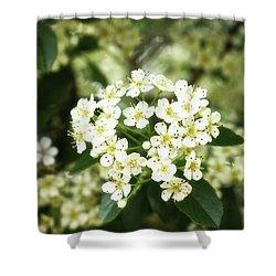 A Thousand Blossoms 3x2 Shower Curtain