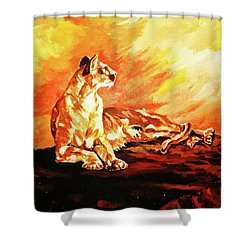 A Time To Relax Shower Curtain