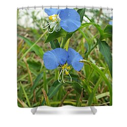 A Touch If Ice Shower Curtain by Audrey Van Tassell