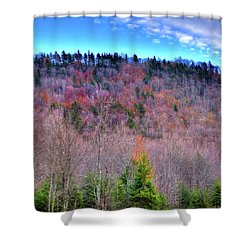 Shower Curtain featuring the photograph A Touch Of Autumn by David Patterson