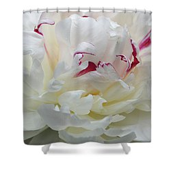 Shower Curtain featuring the photograph A Touch Of Color by Sandy Keeton