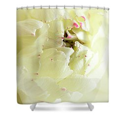 Shower Curtain featuring the photograph A Touch Of Pink by Wendy Wilton