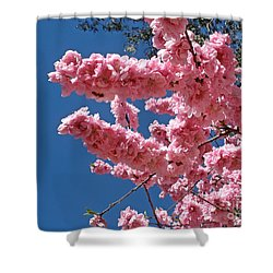 A Touch Of Spring Shower Curtain