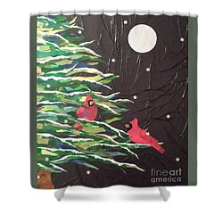 A Light Snowfall Shower Curtain