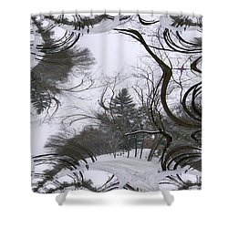 A Tree Fractal Shower Curtain